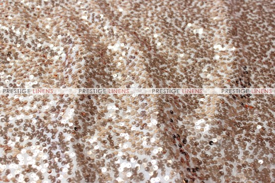 Taffeta Sequins Embroidery Draping - Champagne